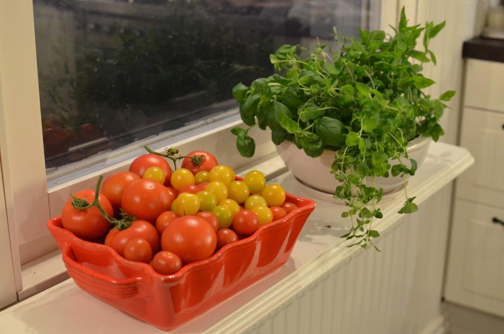 tomater, örter och smutsiga fönster