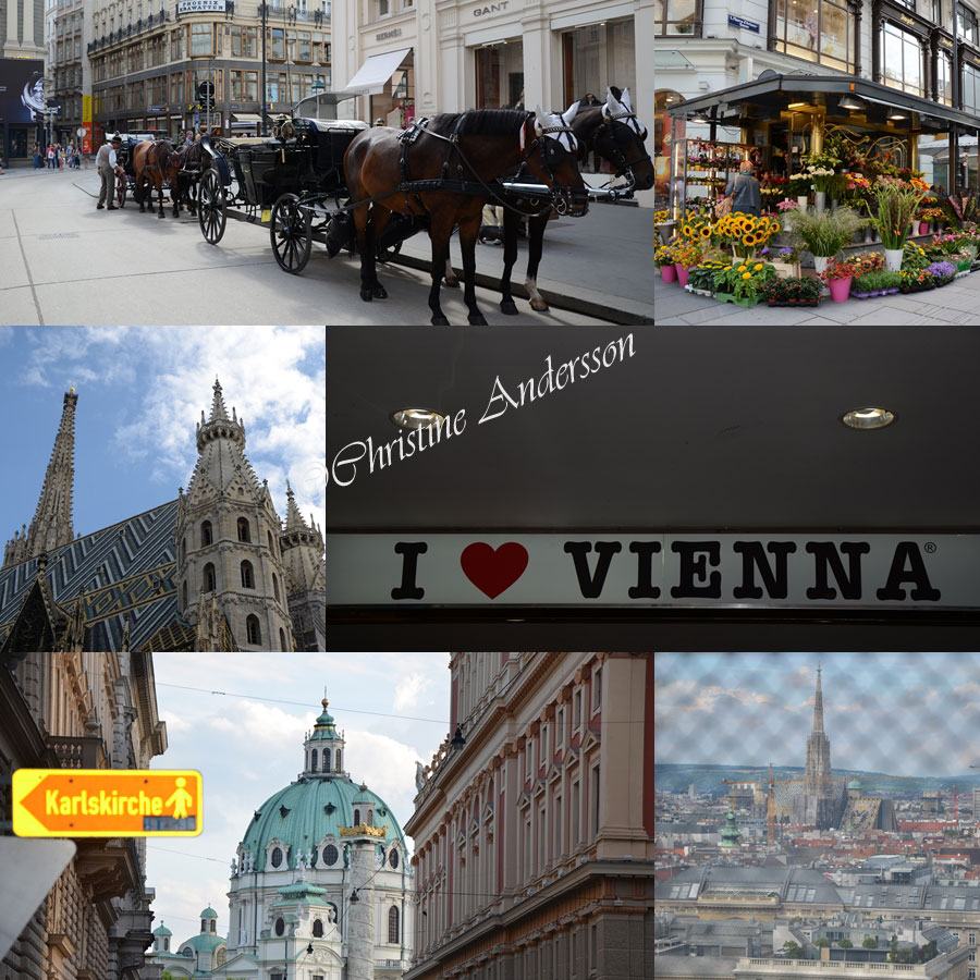 Vienna1-copyright