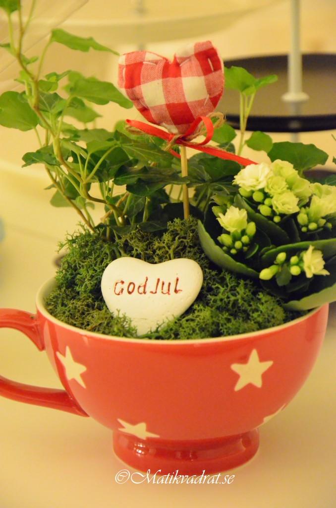 plantering i jumbokopp2 copyright