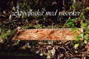 Äppelkaka oktober