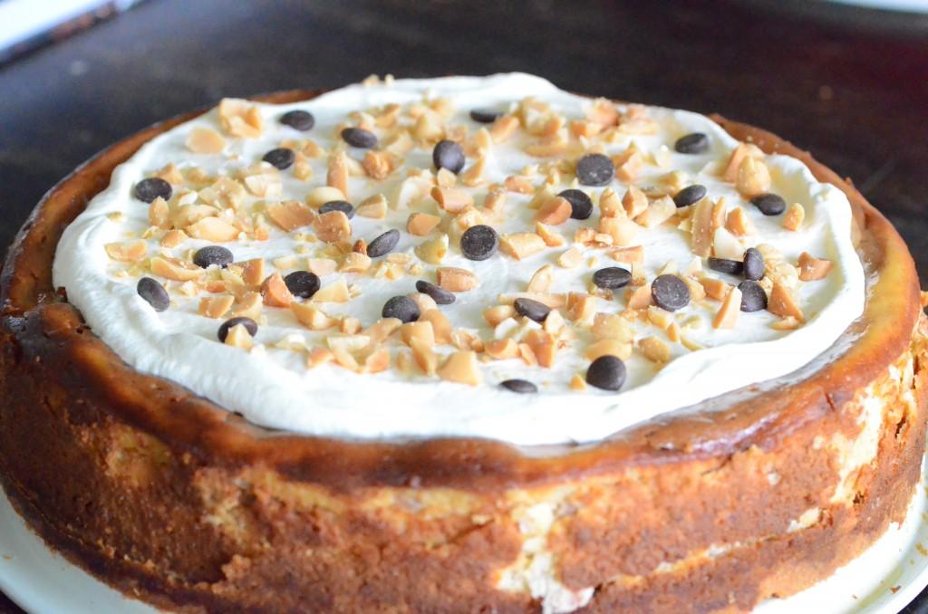 Cheesecake8