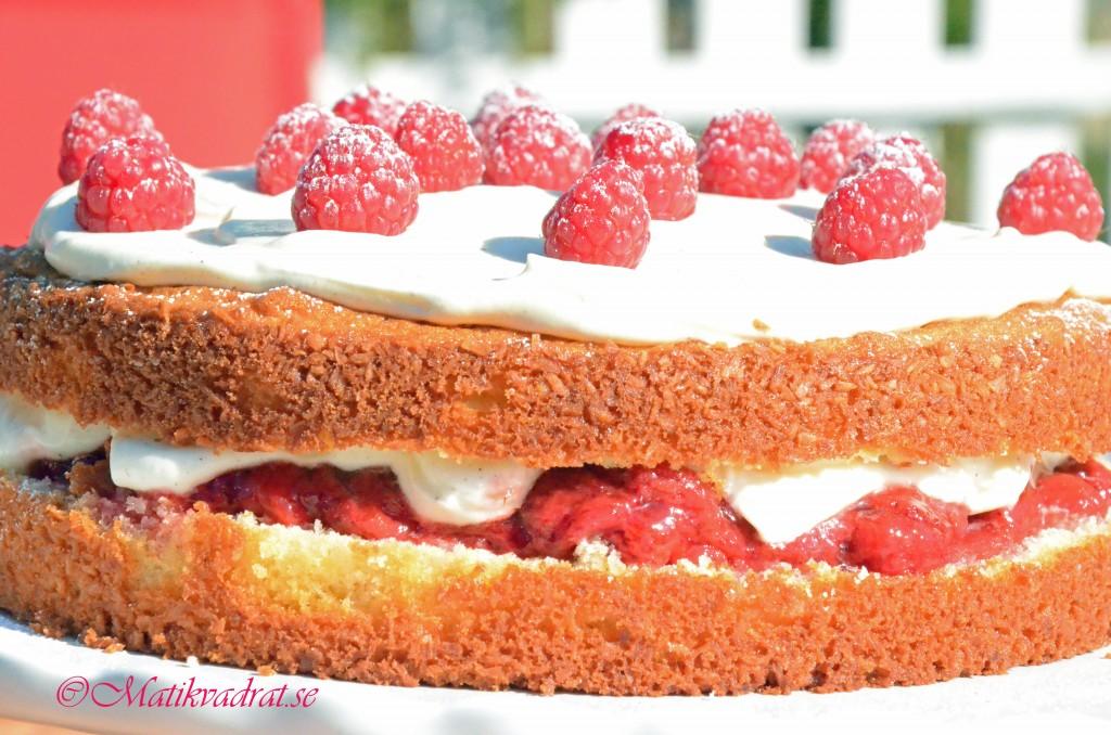 jordgubbstårta1 copyright