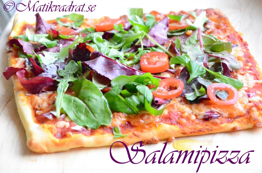 salamipizza1 copyright